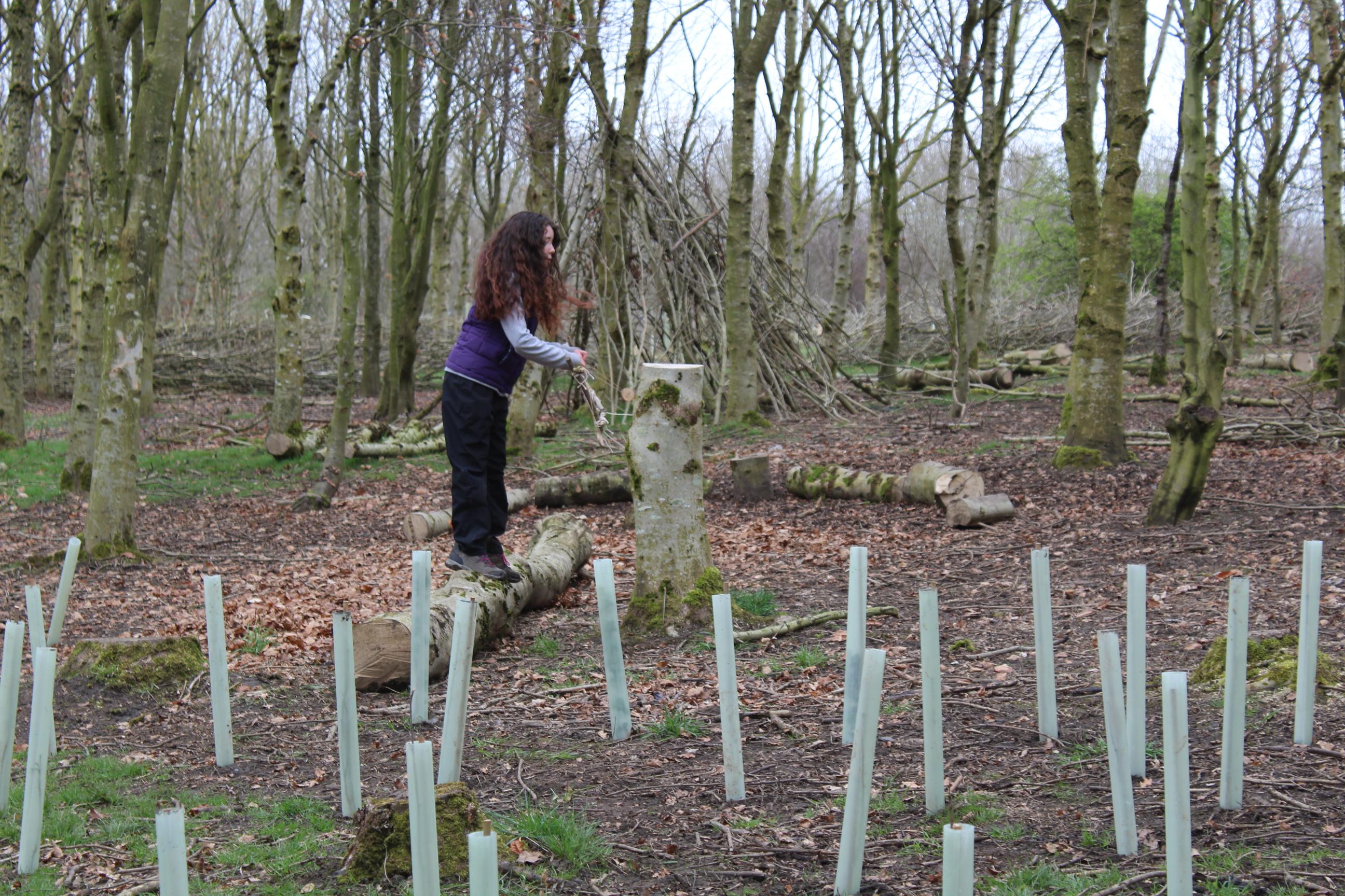 Family Tree Planting 04.04 (1)