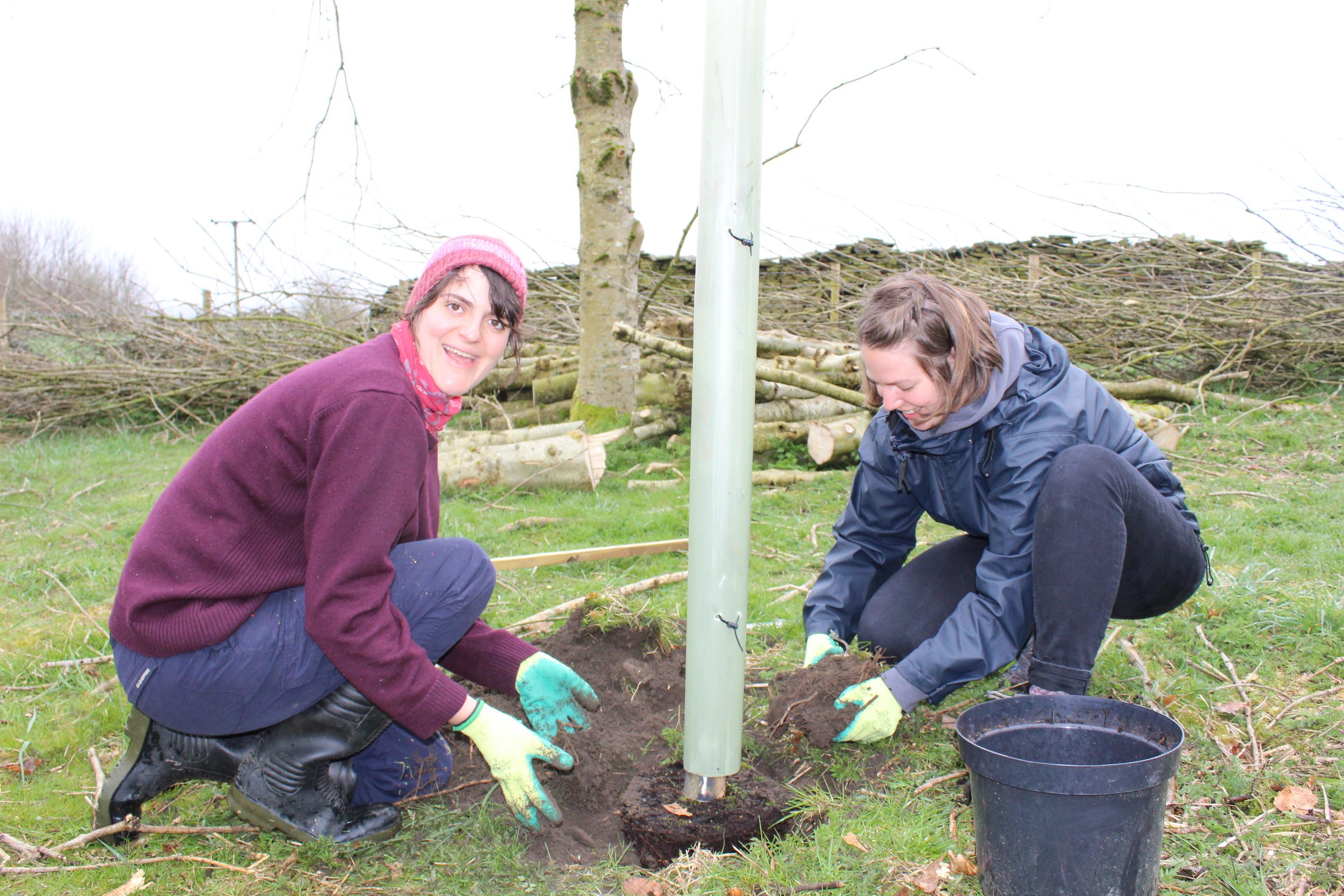 Family Tree Planting 04.04 (43)