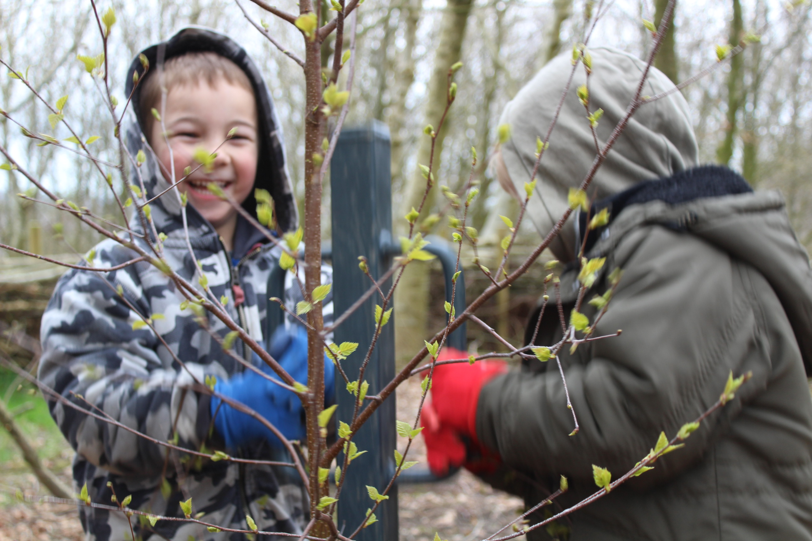 Family Tree Planting 05.04 (66)