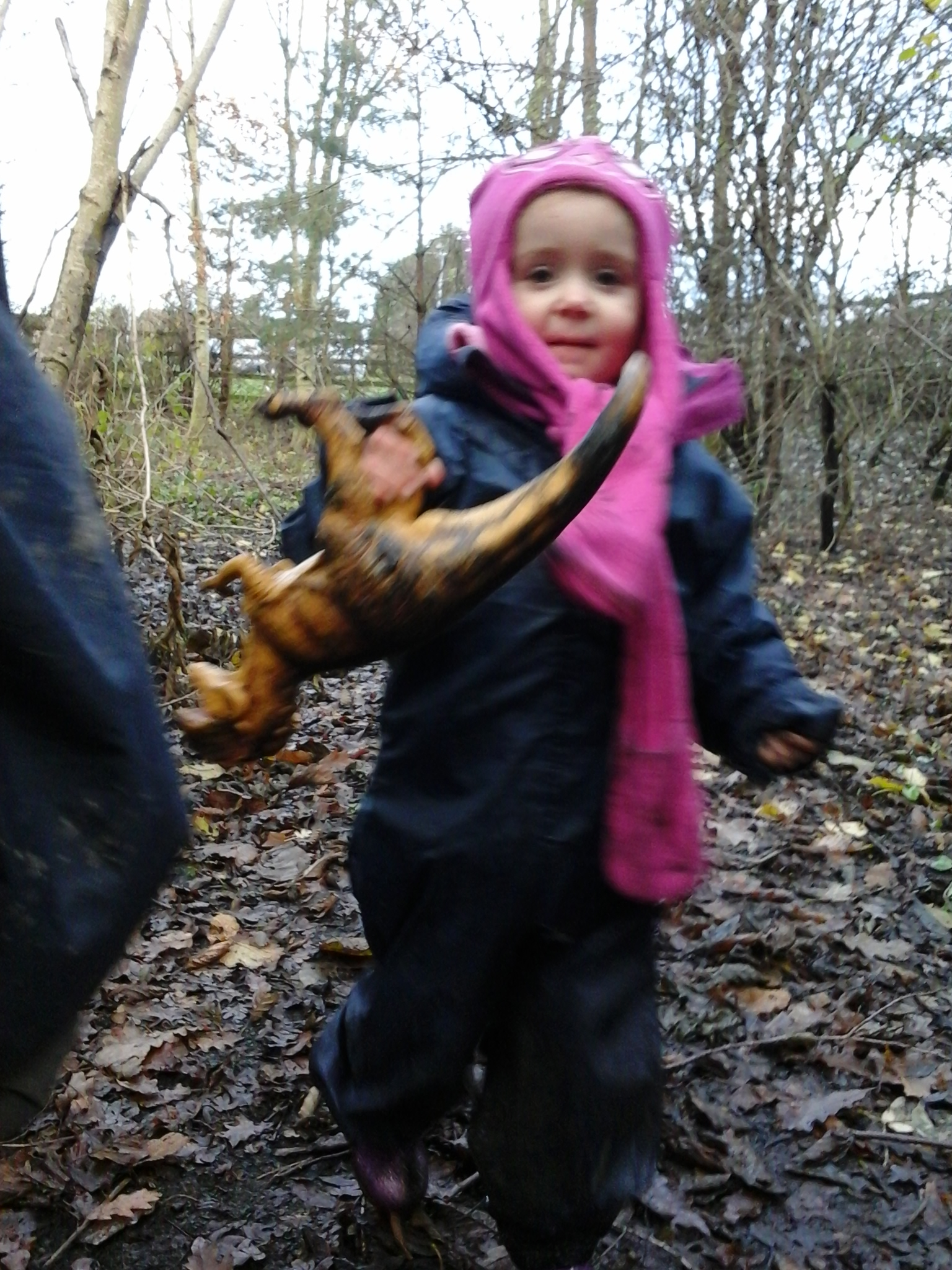 BCFC WCFC Forest School 27.11 (45)