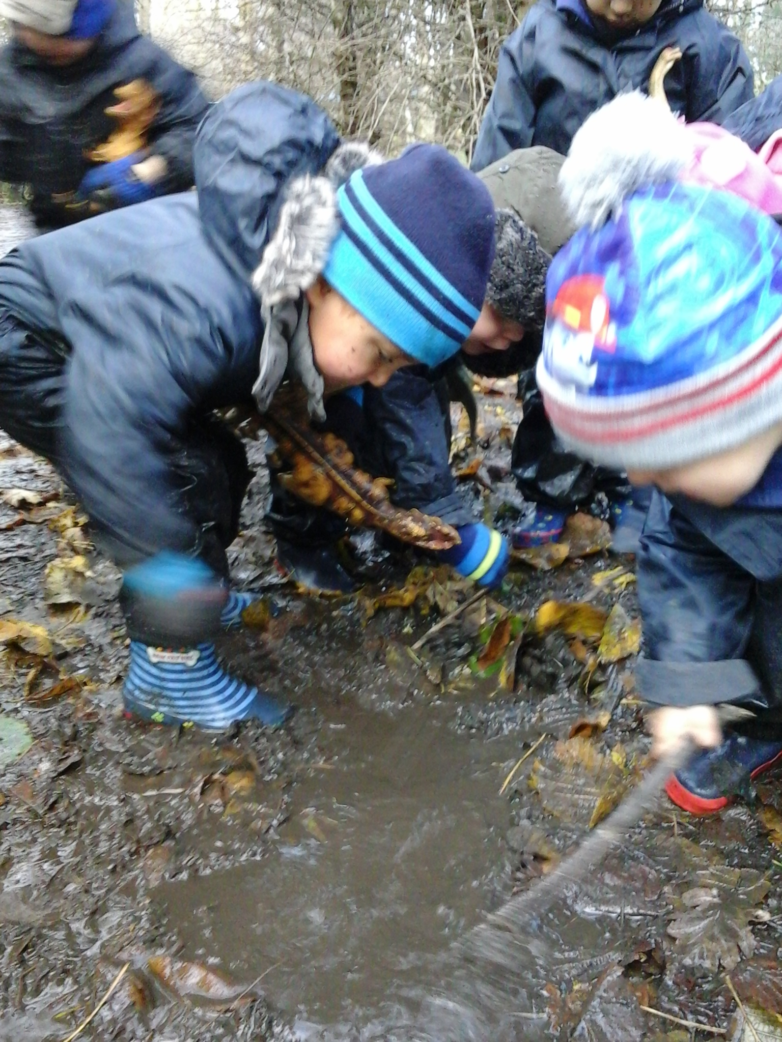 BCFC WCFC Forest School 27.11 (46)