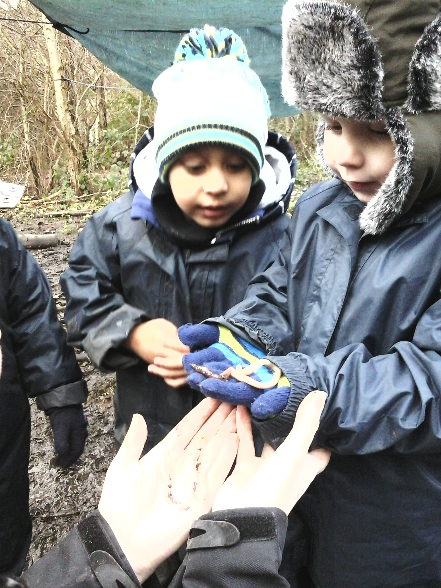 BCFC WCFC Forest School 27.11 (9)